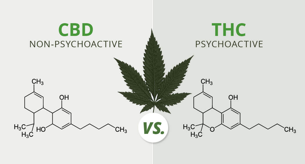 different between cbd and thc